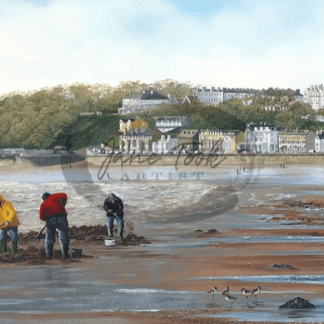 digging_for_worms_on_filey_beach