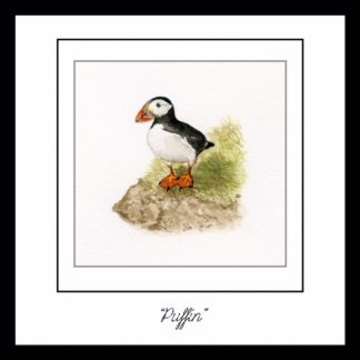 little_puffin_greetings_card