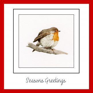 Seasons Greeting Christmas card with a little watercolour robin sitting on a branch